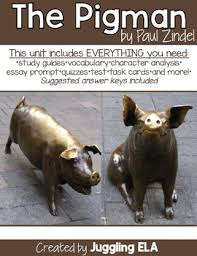 the pigman teaching resources teachers pay teachers  activities and handouts for the pigman by paul zindel