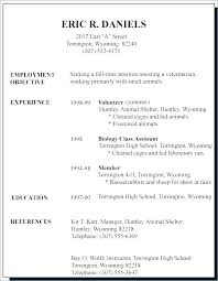 Job Objective Examples For Resumes Enchanting Resume For Job Mkma