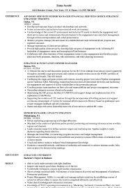 Strategy Manager Senior Manager Resume Samples Velvet Jobs