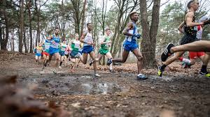 Competitions - SPAR <b>European Cross</b> Country Championships ...