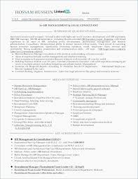 Software Project Manager Resume Project Manager Resume Sample