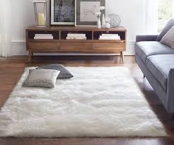 soft area rug placement