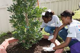 two young girls planting a tree