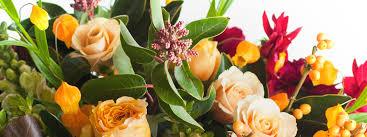 dartmouth florist touch of grace florist gift