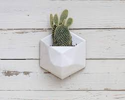 cool white wall planter com geometric hexagon ceramic hanging with wood back nz uk box indoor mounted metal plastic