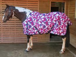 equidor arizona lightweight turnout horse rug free detachable neck no fill
