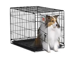 Midwest Icrate Size Breed Chart Midwest Icrate Folding Metal Dog Crate All The Best Dog Stuff