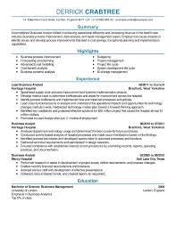 My Perfect Resume Mesmerizing My Perfect Resume Luxury Sample Of The Best Resume Yeniscale