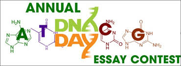 Dna Essay American Society Of Human Genetics Dna Day Essay Contest