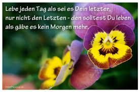 Image Result For Zitate Kurz Deutsch Leben Zitate