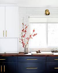 Twig Cabinet Pulls Best Of 46 Unique Mid Century Kitchen Cabinets