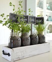 Best 25+ Indoor plant decor ideas on Pinterest   Plant decor, House plants  and Plants indoor