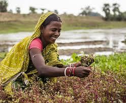 on women empowerment in rural essay on women empowerment in rural
