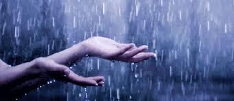 Resultado de imagem para imagens da chuva serôdia