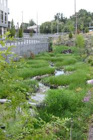 Small Picture 139 best Urban Hydrology images on Pinterest Rain garden