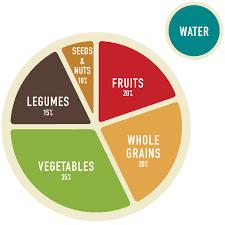 Plant Based Meal Planning Guide Part 1 Veggie Primer