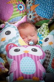 Owl Bedroom Decor Kids 17 Best Images About Toddler Kids Room Ideas On Pinterest Owl