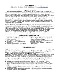 Click Here to Download this Director of Service Delivery Resume Template!  http://
