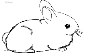 Coloring Pages Of Bunnies For Easter Coloring Pages Bunnies Page