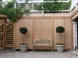 Small Picture Garden Trellis Ideas Garden Design Ideas