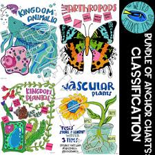 Bundle Scaffolded Note Anchor Chart Science Classification Of Living Things