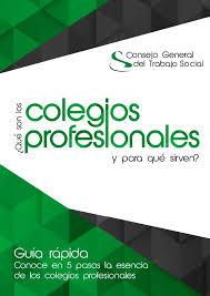 Informe Profesional Portal Del Consejo General Del Trabajo Social Competencia