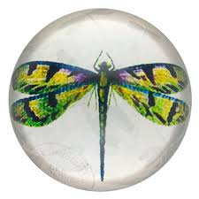 dragonfly paperweight inspirational dragonfly gifts