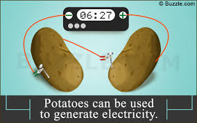 Potato Powered Light Bulb Project Science Fair Projects Learn How To Make A Clock Using A Potato