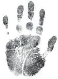 Заключение дактилоскопической экспертизы образец Анапа Справка Курсовая работа на тему Оценка заключения дактилоскопической экспертизы следов рук в раскрытии и