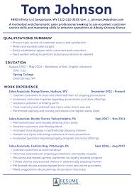 Professional Resumes Examples Interesting What Are The Best Sales Resume Examples 48 Professional Sales