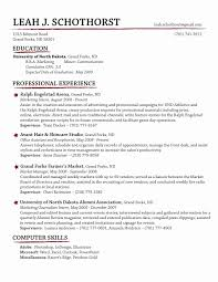 Online Resume Maker Free New Creative Resume Would Do Misc Skills