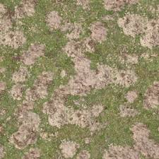 Grass Lawn Texture Background Images Pictures
