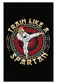 image unavailable image not available for color martial arts gifts