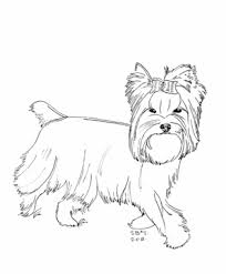 Online coloring pages for kids and parents. Teacup Yorkie Coloring Pages Sketch Coloring Page Dog Coloring Book Puppy Coloring Pages Dog Coloring Page