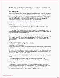 Small Business Owner Resume Guide Examples Pdf Sample For