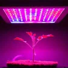 Do Grow Lights Work Guide To How Led Grow Lights Work The Weed Blog