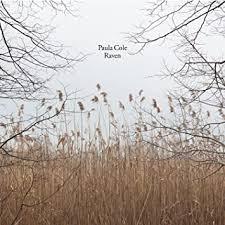 Cole, Paula - Raven - Amazon.com Music