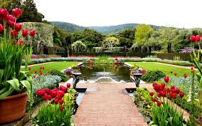 Small Picture Create professional garden design in Real visualization My