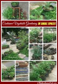 if you don t have space in your yard for a big vegetable garden