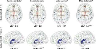 are girls brains wired differently from boys quora