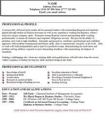 Resume Personal Statement Examples Berathen Com