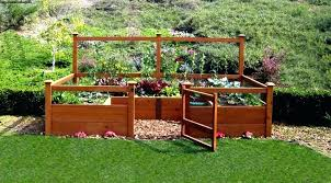 bcp raised vegetable garden bed how to build a raised bed backyard food growing raised vegetable
