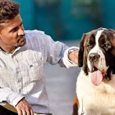 5 answers what is a good place to or adopt a dog in hyderabad