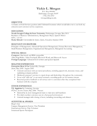 past work experience resume