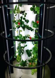 hydroponic tower garden. Hydroponic Tower Garden Indoor Strawberries Grow Beautifully In A Lower 4 5 With S