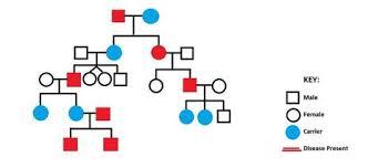 Chapter 7 Extending Medelian Genetics Welcome