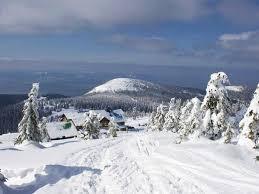 Znalezione obrazy dla zapytania śnieżnik