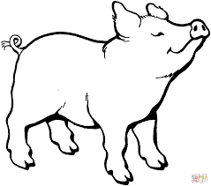 Small Picture Unique Pig Coloring Page 48 For Coloring Pages Online with Pig