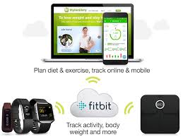 Mynetdiary And Fitbit Integrate Your Diet And Exercise