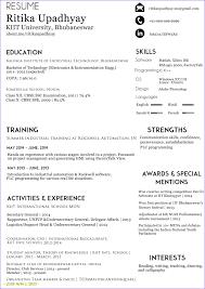 Free Online Resume
